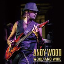 ANDY WOOD - WOOD AND WIRE