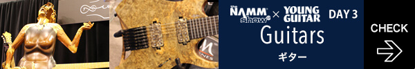 day3thumb-guitars