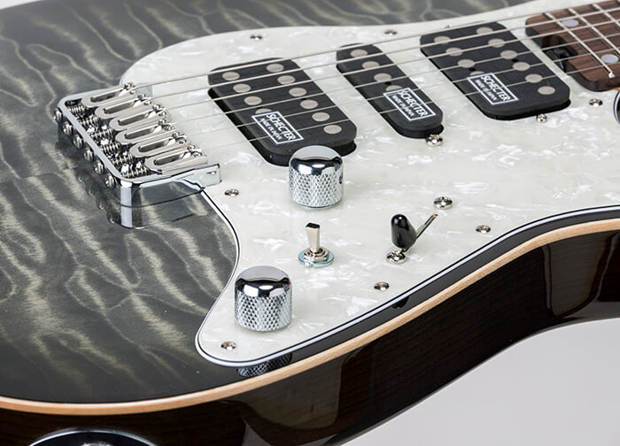 SCHECTER SD-DX-24-AS-FXD/R 拡大3