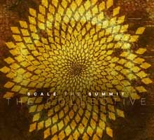 THE COLLECTIVE/SCALE THE SUMMIT