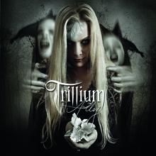 ALLOY/TRILLIUM