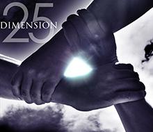 25/DIMENSION