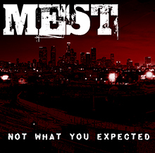 NOT WHAT YOU EXPECTED/MEST