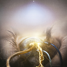 EYE OF PROVIDENCE/THE AGONIST