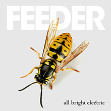 ALL BRIGHT ELECTRIC/FEEDER