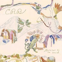 CHRIS ROBINSON BROTHERHOOD - BAREFOOT IN THE HEAD