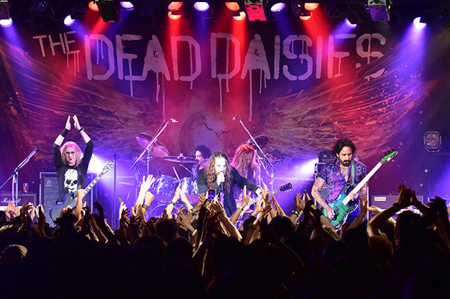 THE DEAD DAISIES - ALL