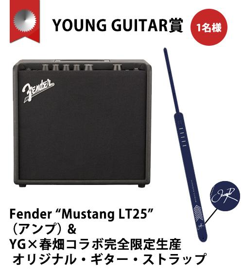 YOUNG GUITAR賞